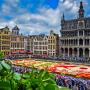 18.08. bis 21.08.2018 – Blumenteppich Brüssel